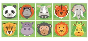 Zoo Animal Placement Carpet thumbnail