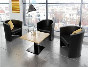 Leather Faced Tub Chair - 2-Seater